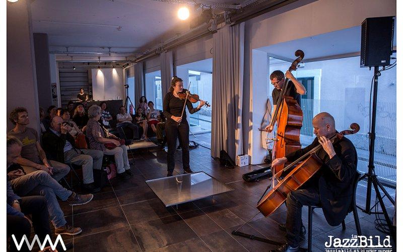 (c) Peter Purgar_Konzert: Irene Kepl / Uli Winter / Meinrad Kneer_25.05.2017