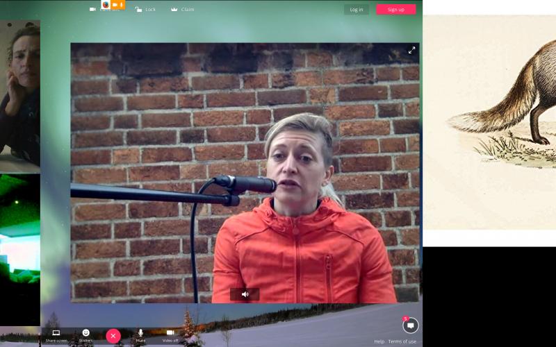 Artist's Meeting und Workshop, Videokonferenz London - Linz - Graz, Foto: Screenshot servus.at