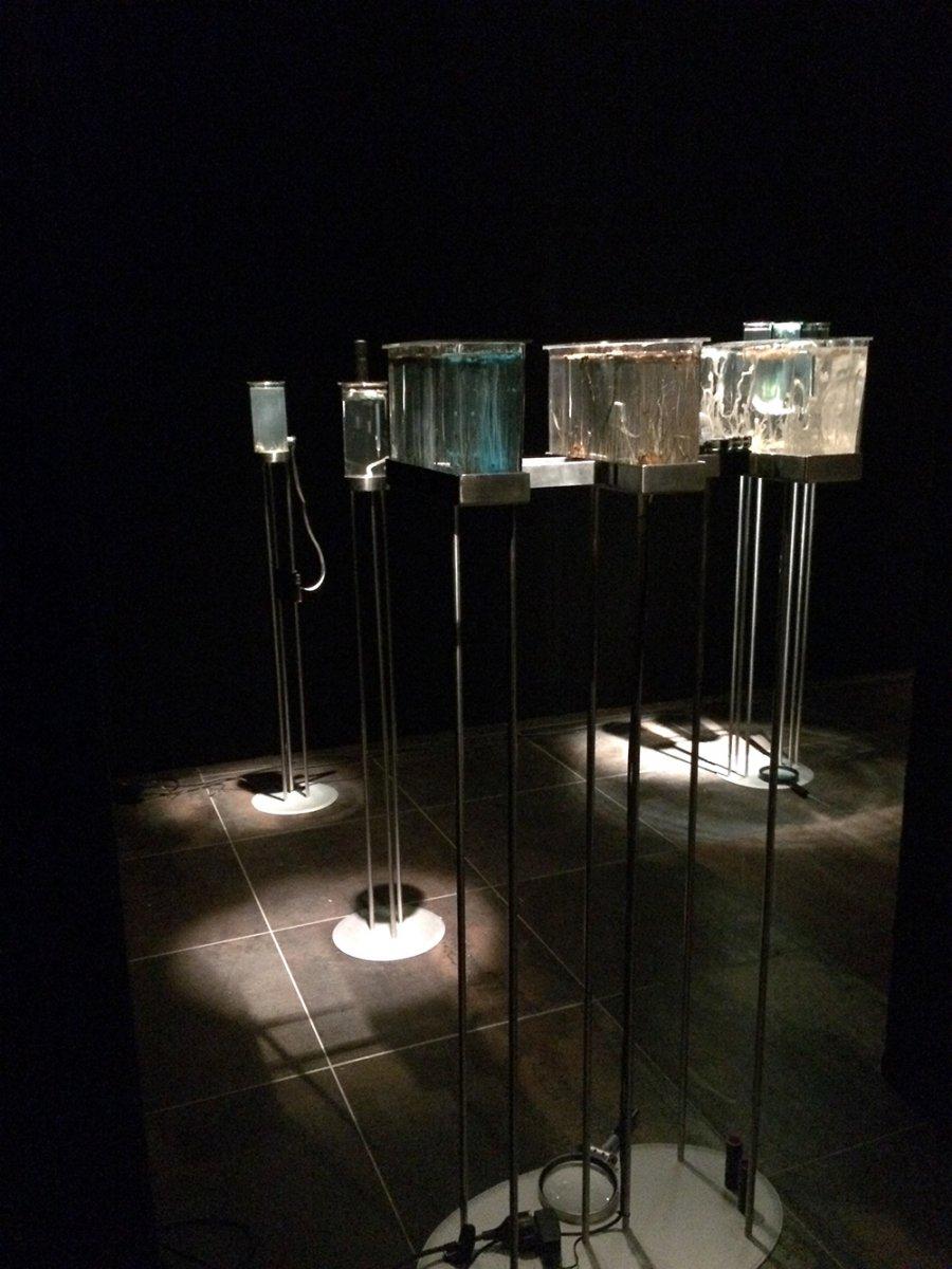 Assonance-of-Drops_Ausstellungsansicht_by_R.Sebjanic_I.Hirsenfelder_A.Hieng-Zergon_@_esc_medien-kunst-labor_©_esc-mkl_Foto:_Nayarí-Castillo