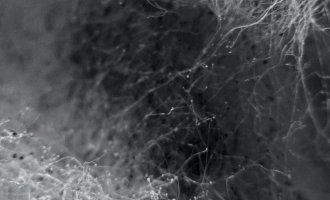ITERATIONEN_Projekt-Collaboration-Contamination_@_esc_medien-kunst-labor_©_esc-mkl_Foto:_Miriam-Raggam