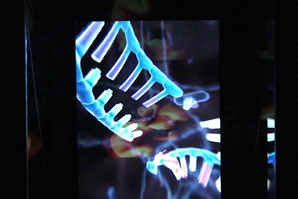 ©esc_medien kunst labor_Homunculus Box_alien productions